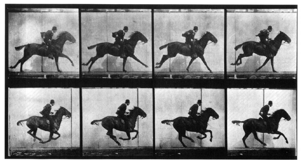 eadweardmuybridgehorse